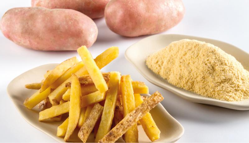 Croczin - Corretor de crocância para revestimento lipófobo em frituras.